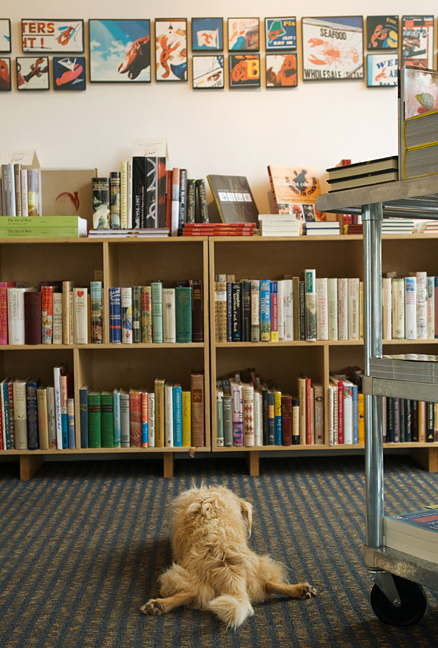 Last but certainly not least, Raleigh, very possibly the best dog ever (sorry, Clara), at Rabelais, a cookbook store devoted to new, used and rare books on food, beverages and gardening.