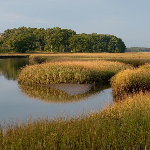 Spurwink Marsh