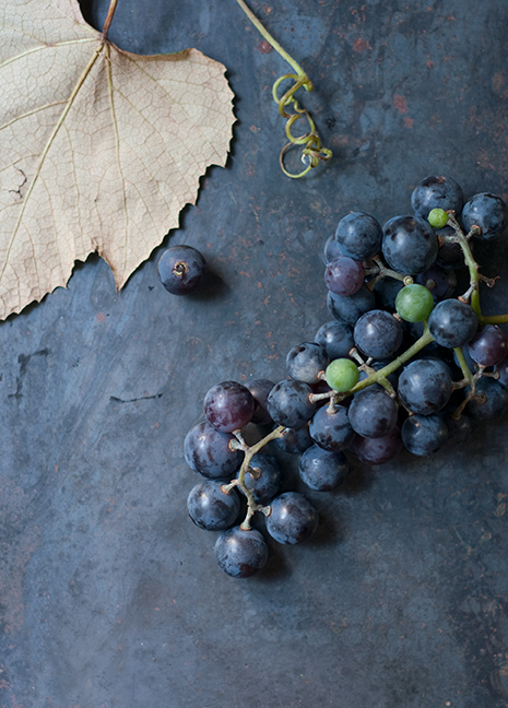 concord grape jam from Hannah Holmes' grapes